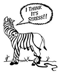 Stress Zebra Stripes Fall Off